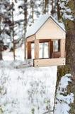 Фидер птицы на дереве зимы стоковая фотография rf