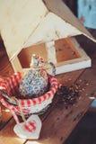 Фидер птицы с семенами на деревянном столе в уютном загородном доме, тонизированном годе сбора винограда Стоковая Фотография RF