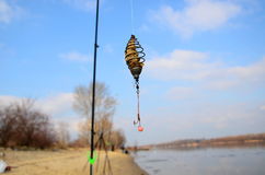 Фидер рыбной ловли Стоковое Изображение