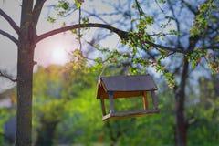 Фидер для птиц на дереве Стоковая Фотография RF