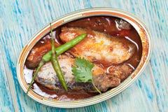 Филе скумбрии в томатном соусе Стоковое Изображение RF
