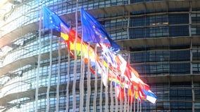 Флаги Европейского союза резюмируют мечтательный взгляд через влияние воды сток-видео