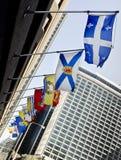 Флаги Канады захолустные Стоковые Изображения