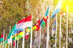 Флаги на предпосылке голубого неба в солнечном свете Стоковые Изображения