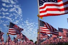 флаги поля Стоковые Фото
