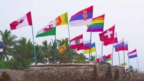 Флаги различных стран на ветреный день на пляже акции видеоматериалы