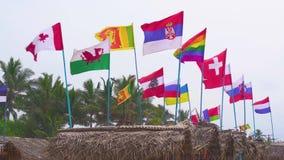 Флаги различных стран порхая в ветре Солнечный день на каникулах в тропиках на пляже акции видеоматериалы