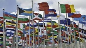 флаги 2010 экспо Стоковая Фотография