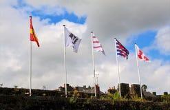 5 флагов дуя в ветре Стоковое Изображение