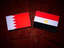 Флаг Бахрейна с египетским флагом на изолированном пне дерева Стоковое Фото