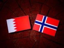 Флаг Бахрейна с норвежским флагом на изолированном пне дерева Стоковые Фото
