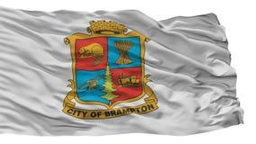 Флаг города Brampton, Канада, изолированная на белой предпосылке бесплатная иллюстрация