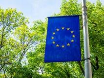 Флаг ЕС на поляке на предпосылке зеленых деревьев на солнечный день Флаг Европейского союза outdoors Голубой флаг с 12 желтым стоковые изображения