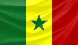 флаг Сенегал Стоковые Изображения RF