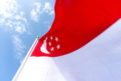 Флаг Сингапура дунутый на флагштоке над голубым небом Стоковое фото RF