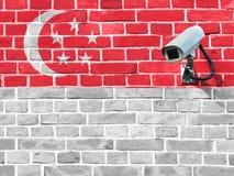 Флаг Сингапура покрашенный на кирпичной стене Стоковая Фотография RF