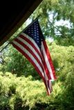 Флаг США с вечнозеленой предпосылкой стоковые фотографии rf