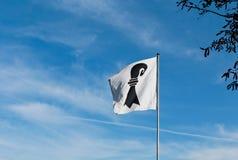 флаг Швейцария города basel Стоковые Изображения RF