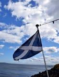 флаг Шотландия Стоковые Изображения