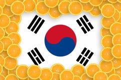 Флаг Южной Кореи в свежей рамке кусков цитрусовых фруктов бесплатная иллюстрация