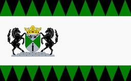 Флаг Emmen Нидерландов стоковое изображение rf