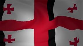 Флаг Georgia развевая в ветре сток-видео