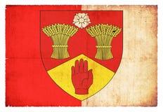 Флаг Grunge Лондондерри Ирландии Стоковое Изображение RF