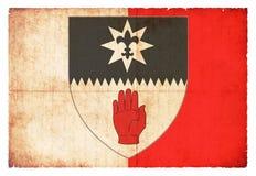 Флаг Grunge Тайрона Ирландии Стоковая Фотография