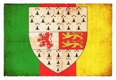 Флаг Grunge Carlow Ирландии Стоковые Изображения