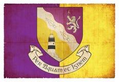 Флаг Grunge Wexford Ирландии Стоковое Фото