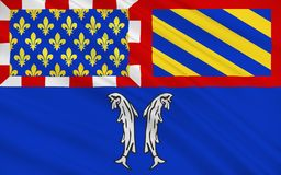 Флаг Montbard коммуна и супрефектура Cote d'Or иллюстрация штока