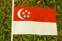 флаг singapore Стоковые Фотографии RF