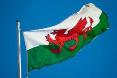 флаг welsh Стоковое Изображение RF