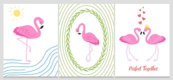 Фламинго или тропическая иллюстрация птиц для карточки партии Предпосылка лета экзотическая Винтажный милый праздник знамени или  Стоковые Изображения