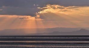 Фламинго на озере Natron на заходе солнца Танзания вышесказанного стоковая фотография rf