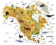 Флора и фауна Северной Америки составляют карту, плоские элементы Животные, птицы иллюстрация вектора