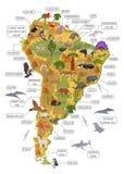 Флора и фауна Южной Америки составляют карту, плоские элементы Животные, птицы бесплатная иллюстрация