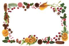 Флора рождества и граница предпосылки еды Стоковые Фотографии RF