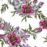 Флористическая безшовная картина с пионами акварели, жасмин, тюльпаны и подняла Стоковые Изображения