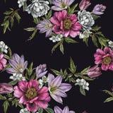 Флористическая безшовная картина с пионами акварели, жасмин, тюльпаны и подняла Стоковое Изображение RF