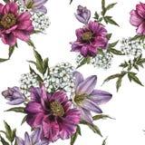 Флористическая безшовная картина с пионами, жасмином и тюльпанами акварели Стоковые Фотографии RF