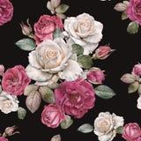 Флористическая безшовная картина с розами и листьями акварели стоковая фотография rf