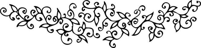 флористическая виньетка xcvi Стоковое Фото