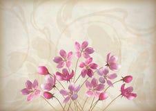 Флористическая декоративная конструкция венчания или приглашения Стоковое Изображение