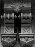 Флористическая деталь с симметрией Стоковые Изображения