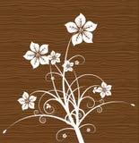 флористическая древесина вектора Стоковые Фотографии RF
