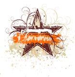 флористическая звезда grunge Стоковые Фотографии RF