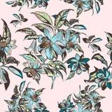 Флористическая иллюстрация при нарисованная рука вектора цветет в годе сбора винограда VI Стоковые Изображения RF