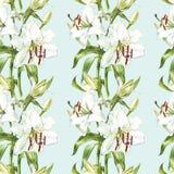 флористическая картина безшовная Лилии акварели белые, рука нарисованная ботаническая иллюстрация цветков Стоковые Изображения