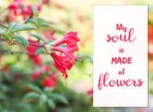 Флористическая карточка с красивыми цветками рододендрона Стоковая Фотография